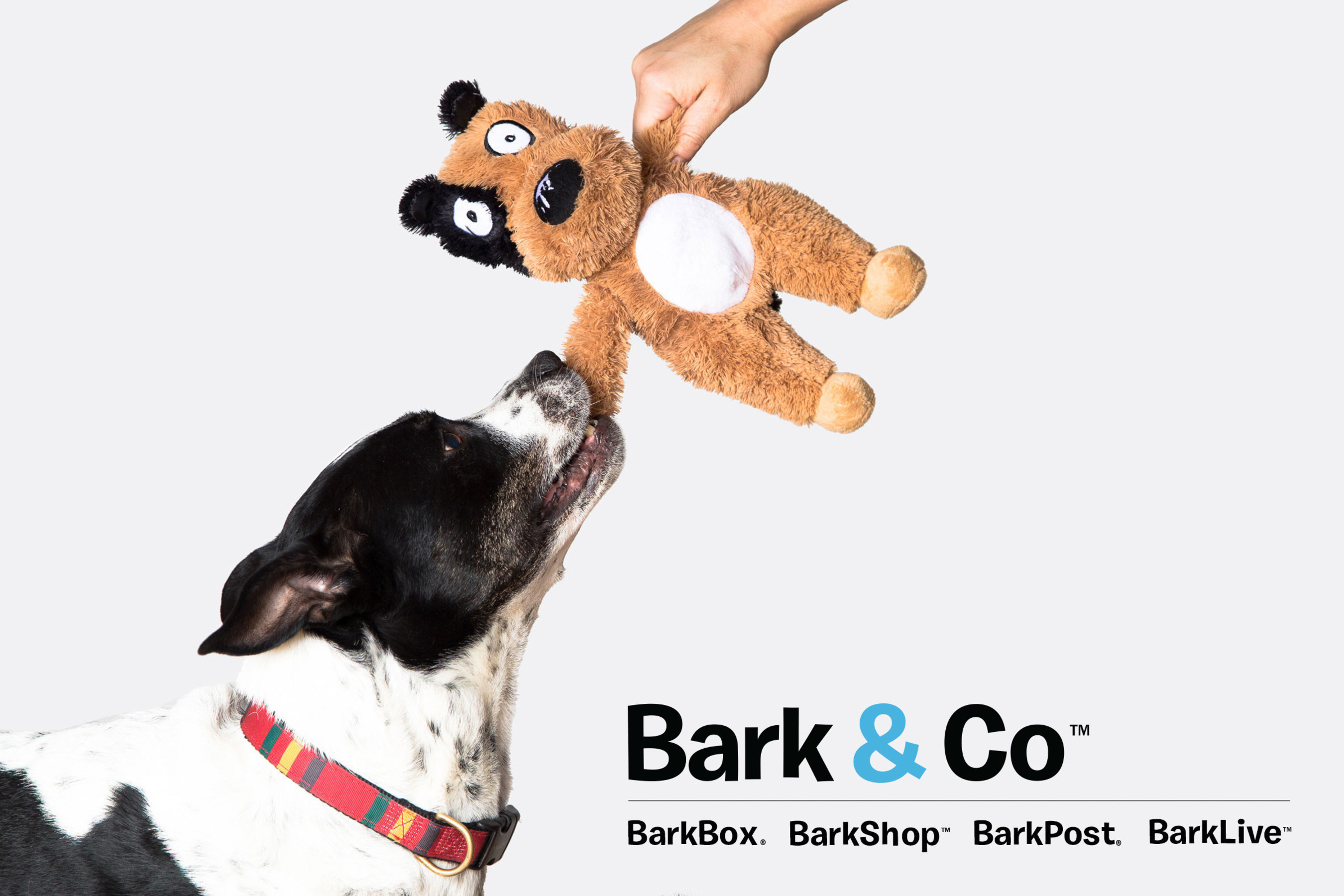 Bark & Co, the company behind BarkBox, BarkShop, BarkPost and BarkLive, announced $60 million in new funding to grow and expand its offerings for dogs and their people.