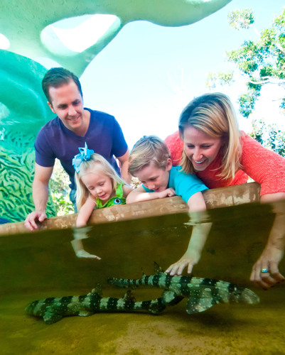 Kids of all ages, and adults, will be encouraged to reach in and connect with marine life (including ...
