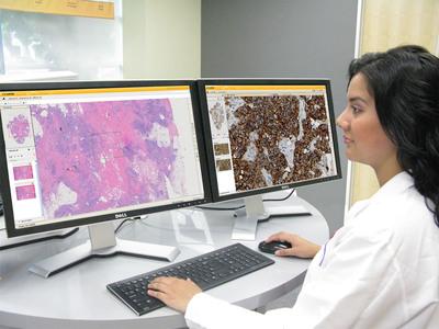 VENTANA Virtuoso image and workflow management software.  (PRNewsFoto/Ventana Medical Systems, Inc.)
