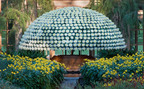 Longwood Gardens Grows Largest Chrysanthemum in North America.  (PRNewsFoto/Longwood Gardens)