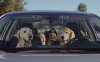 """The Return of the Barkleys: Subaru Launches New """"Dog Tested. Dog Approved."""" TV Ad Campaign, Starring America's Favorite Canine Family"""