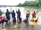 Wounded veterans and their service dogs tried their hands - and paws - at stand up paddle boarding during a recent Wounded Warrior Project event.