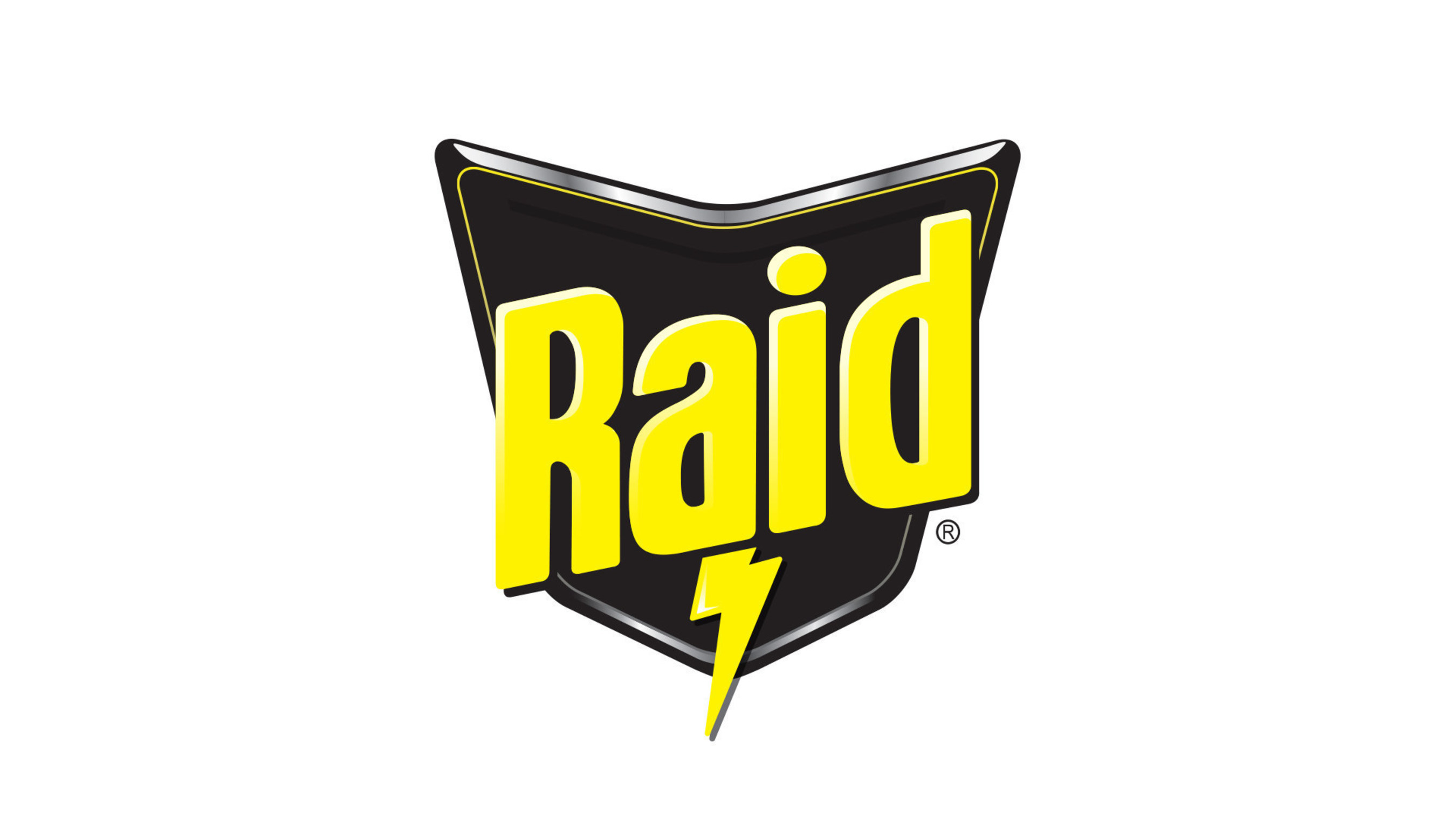 Raid(R) Logo