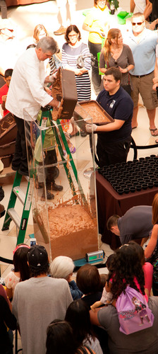 Chef Danny Malone of Turnberry Isle Miami weighs the 496-pound chocolate mousse with the help of volunteers ...