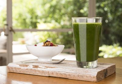 Hinoman's Vegetable Whole-protein Ingredient Granted GRAS Status