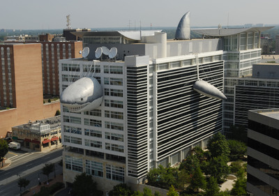"In celebration of Discovery Channel's SHARK WEEK, ""Chompie"" has returned to the Discovery Communications headquarters in Silver Spring, MD. The giant inflatable shark is 446 feet long from his nose to his tail, and took 6.65 miles of fabric to make. SHARK WEEK, cable's longest running event, celebrates its 23rd anniversary this year and kicks off on Sunday, August 1 at 9PM ET/PT with Ultimate Air Jaws. (PRNewsFoto/Discovery Channel)"