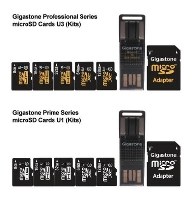 Gigastone Micro SD Flash Memory