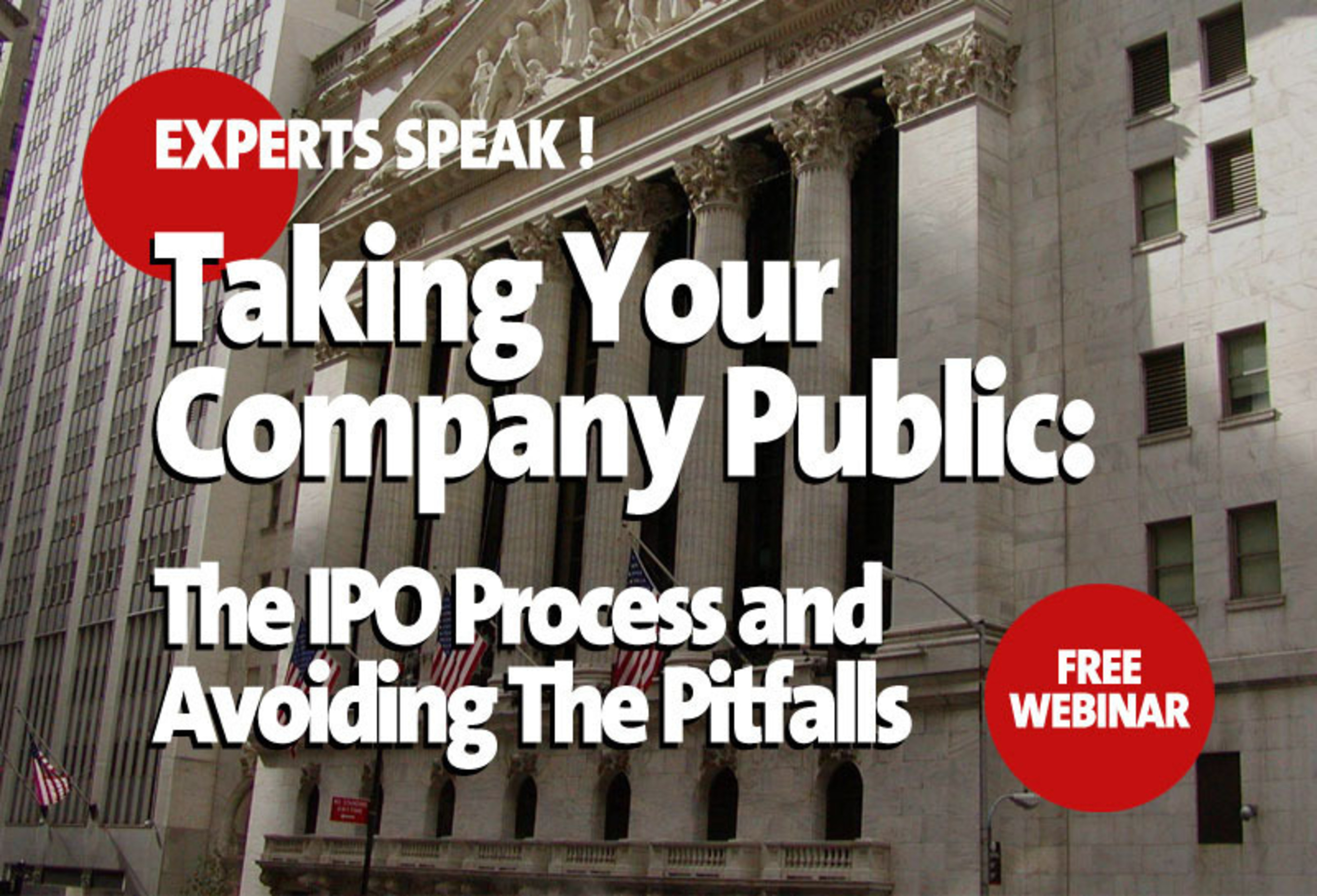 PR Newswire and Vintage Filings present webinar, Taking Your Company Public: The IPO Process and Avoiding The Pitfalls.  (PRNewsFoto/PR Newswire Association LLC)