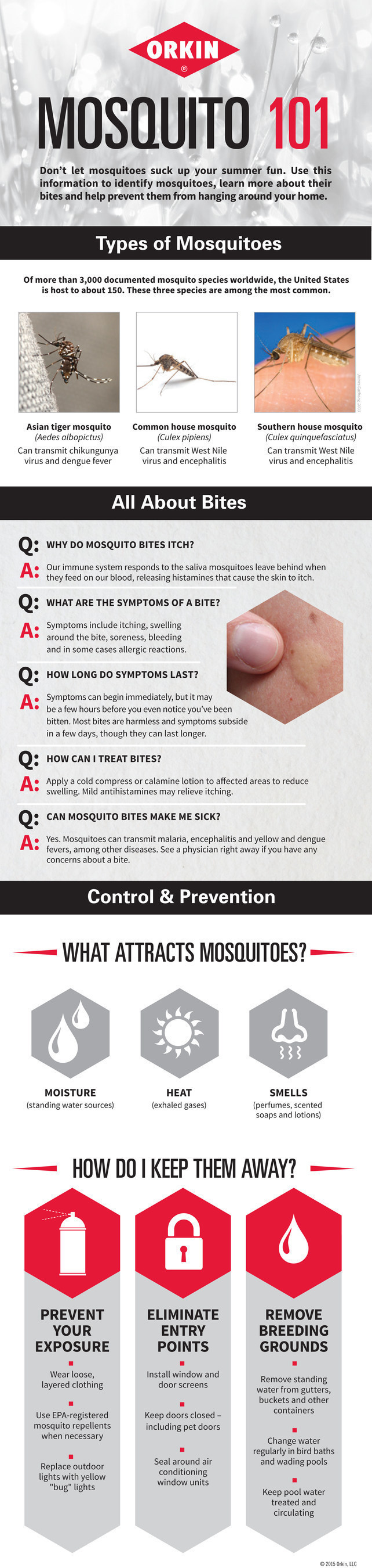 Use this information to identify mosquitoes, learn more about their bites and help prevent an infestation ...