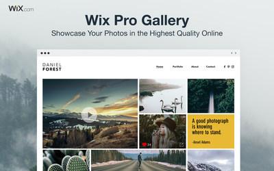 Wix Pro Gallery