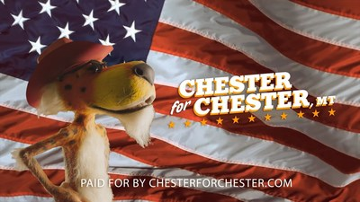Chester Cheetah, the official spokes-cheetah of the Cheetos brand, is trying his paw at politics by campaigning for mayor of Chester, Mont.
