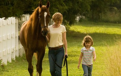 Homes for the Holidays for Horses in Need