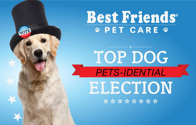 Candidates sought for Canine in Chief and Canine Cabinet in the Best Friends Pet Care Pets-idential election this month.  (PRNewsFoto/Best Friends Pet Care)