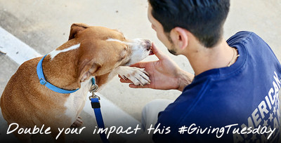 Animal lovers can double their impact by donating to American Humane during a special two-for-one matching grant challenge!
