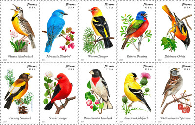 You don't need a smartphone to tweet once the Postal Service issues 10 colorful Songbirds Forever Stamps. The dedication ceremony takes place at 10:30 a.m. Sat. April 5 in Dallas at the Trinity River Audubon Center.The stamps depict: the western meadowlark, the mountain bluebird, the western tanager, the painted bunting, the Baltimore oriole, the evening grosbeak, the scarlet tanager, the rose-breasted grosbeak, the American goldfinch and the white-throated sparrow. (PRNewsFoto/U.S. Postal Service) (PRNewsFoto/U_S_ POSTAL SERVICE)
