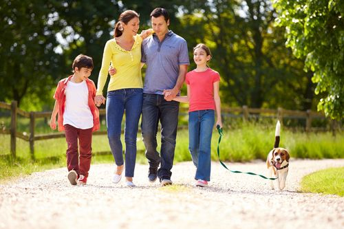 New research shows that pet ownership improves the likelihood of forming new relationships within their ...