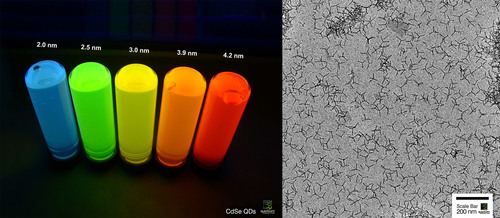 Quantum Materials Corp CdSe Tetrapod Quantum Dots. Left: Luminescent Vials show color varies with QD size. Right: Tetrapod Quantum Dots by Electron Microscope.  (PRNewsFoto/Quantum Materials Corporation)