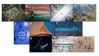 Die Top 10 der Luftbildaufnahmen weltweit