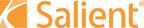 Salient logo.  (PRNewsFoto/Salient Partners L.P.)