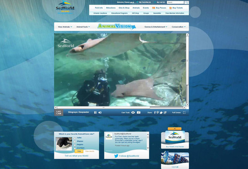 For nearly five decades SeaWorld(R) has connected guests to the natural world through innovative animal habitats and inspiring shows. With the launch of AnimalVision(TM), 24/7, on-habitat cameras stream footage to customized interactive websites, allowing visitors to create a connection right from the comfort of home at www.AnimalVision.com.  (PRNewsFoto/SeaWorld Parks & Entertainment)