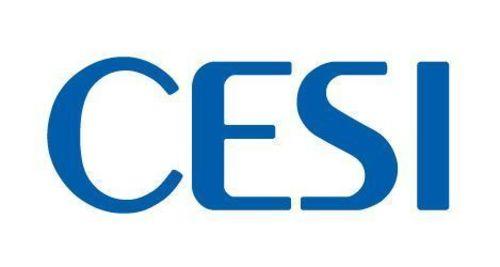 CESI Logo (PRNewsFoto/CESI)