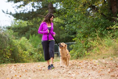 Dog walkers are more physically active than non-dog walkers. (PRNewsFoto/Mars Petcare)