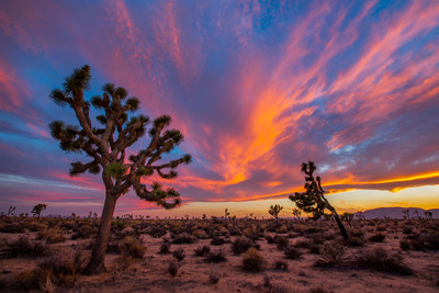 Share nat'l park memories & you could win! nationalparks.org Photo: Manish M. (PRNewsFoto/National Park Foundation)