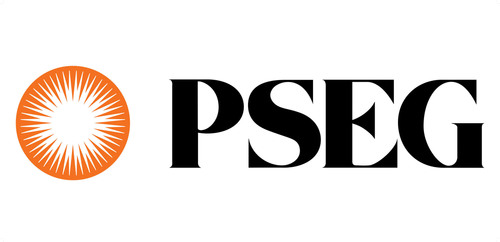 Public Service Enterprise Group (PSEG) is a publicly traded diversified energy company. Its operating subsidiaries are: PSEG Power, Public Service Electric and Gas Company (PSE&G) and PSEG Long Island. (PRNewsFoto/PUBLIC SERVICE ENTERPRISE GROUP)