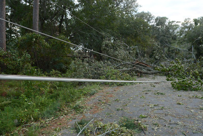 Restoration efforts underway following downed trees and lines due to Hurricane Matthew.