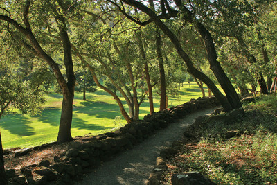 View from one of the hiking trails, which run throughout the Meadowood property.  (PRNewsFoto/Meadowood Napa Valley)