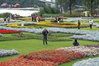Enjoying the beauty of Floriade.  (PRNewsFoto/Grand Circle Corporation)