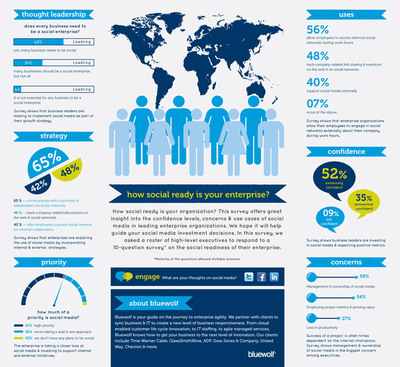 Bluewolf Survey: Companies Go Social With Reservations