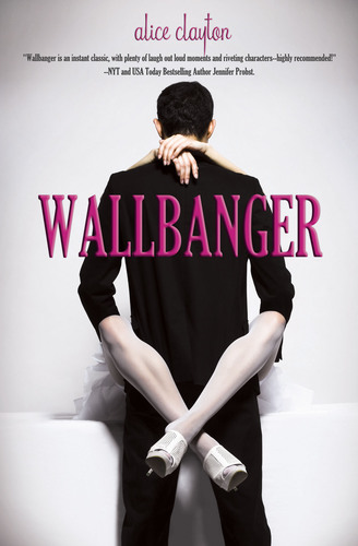 WALLBANGER.  (PRNewsFoto/Omnific Publishing)