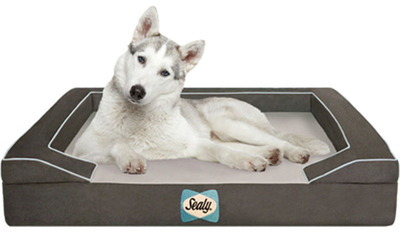 "The Sealy Dog Bed is available in two color combinations: ""The Max"" (shown here), and ""The Bella"" which features chocolate and cream. (PRNewsFoto/Sealy, Inc.)"
