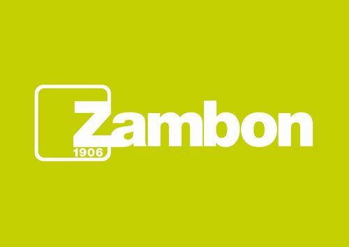 Zambon Logo (PRNewsFoto/Zambon S.p.A.)