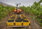 2015 California Winegrape Harvest Report: Early, Light and Exceptional Quality