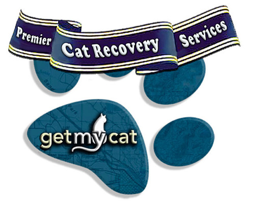 GetMyCat announces first year results: 2200 helped to find lost cats