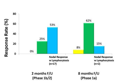 Response in Evaluable Patients.  (PRNewsFoto/Pharmacyclics)