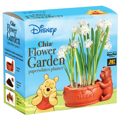 Ch-Ch-Ch-Chia! Chia Flower Garden.  (PRNewsFoto/Joseph Enterprises, Inc.)