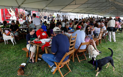 Chef Michael's food for dogs sets a RecordSetter World Record by hosting 224 people at the Largest Dog-Friendly Communal Dining Event, Saturday, June 29, 2013, in Bridgehampton, N.Y. (John Minchillo/AP Images for Chef Michael's).