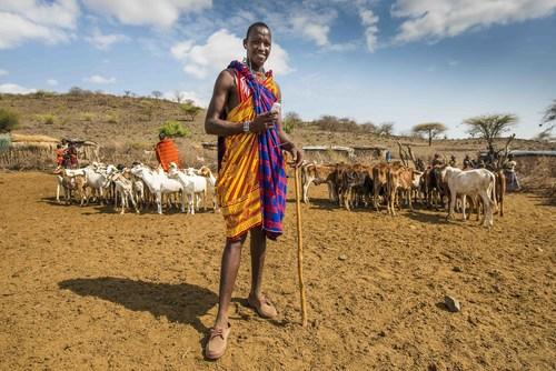 Africa's mobile money marketplace (PRNewsFoto/Jumo)