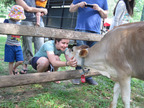 "A ""Happy Cow"" at the Eastleigh Farm. (PRNewsFoto/Eastleigh Farm)"