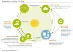 UE:La legislación de residuos destaca el papel de los bio materiales en el paso a una economía circular