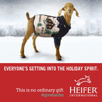Get into the Holiday Spirit with Heifer International