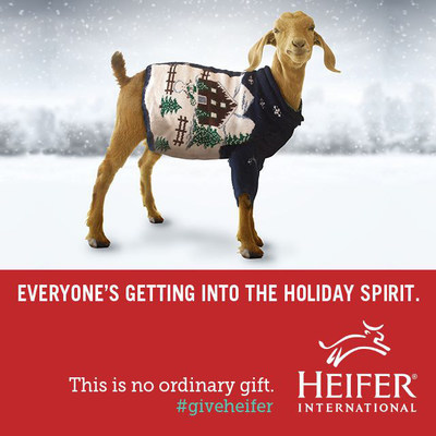 This year our animals are getting into holiday spirit by wearing their favorite holiday sweaters.