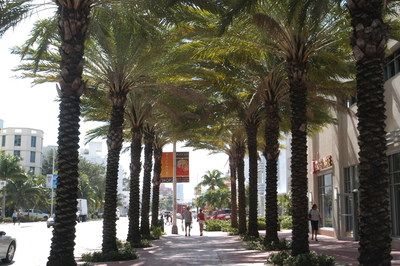Couple strolling down palm tree covered sidewalk on Miami Beach (Photo Credit: Miami Beach Visitor and Convention Authority)