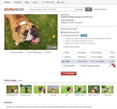 Shutterstock Launches Reverse Image Search and Visually Similar Search and Discovery