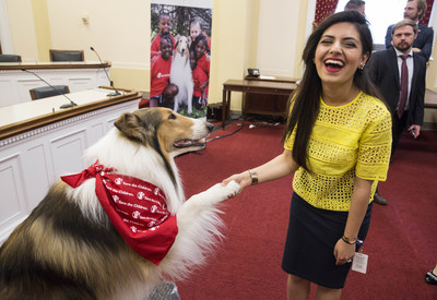 Lassie, Save the Children's animal ambassador for emergency preparedness, shakes paws with Sophia M. Anwar, a staffer for Rep. Brenda Lawrence (D-MI), at a Wednesday Congressional briefing on Capitol Hill in Washington, DC, on April 29, 2015.