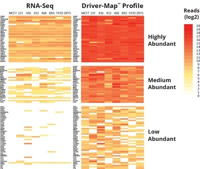 Cellecta, Inc. Driver-Map (TM) Expression Profiling service achieves 1,000 to 10,000-fold dynamic range resulting in greater sensitivity than RNA-Seq to yield a more comprehensive view of low- and high-abundant gene transcripts across panels of interest