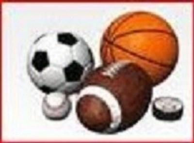 Basports.com logo (PRNewsFoto/Basports.com)